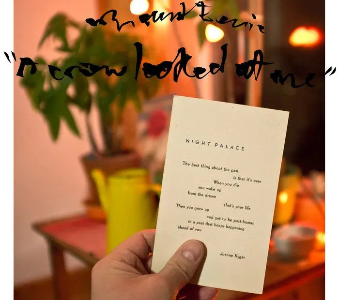 Mount Eerie - A Crow Looked At Me | recensione