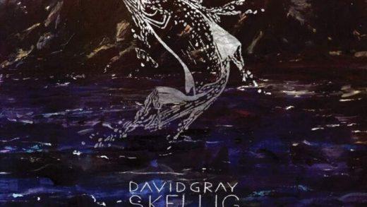 David Gray – Skellig