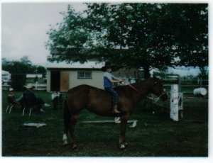 first ride, horses, colts, oregon, texas, WY, 5 years old, colttrainer, tom davis,