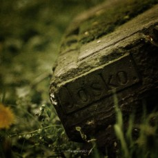 cosel_cemetery_1_06