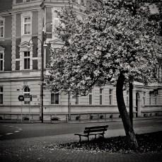schwarz-weiß-welt_27