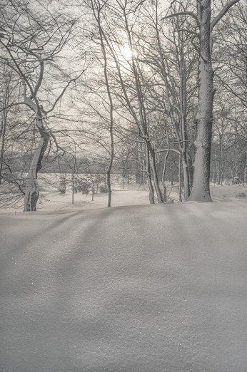 winter_fell_01