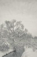 winter_fell_06