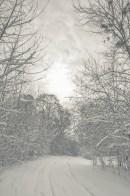winter_fell_07