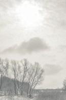 winter_fell_14