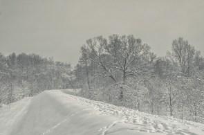 winter_fell_19