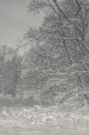 winter_fell_21