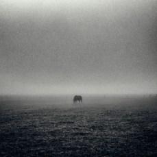 fog_eersel_2_05