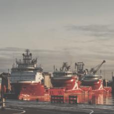 dusk over the port_0009