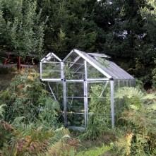 Appledore greenhouse
