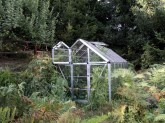 Appledore greenhouse