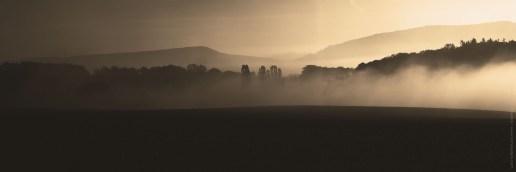 Zlaté mlhavé ráno