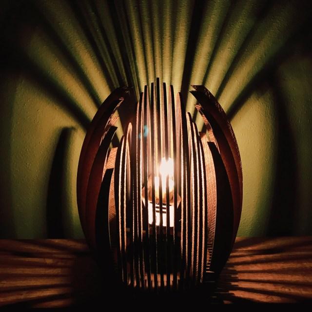"""Bud"" light by Tona Williams"