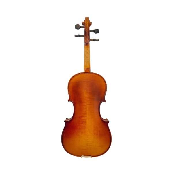 Produktbillede af bagsiden på en viola med hvid baggrund