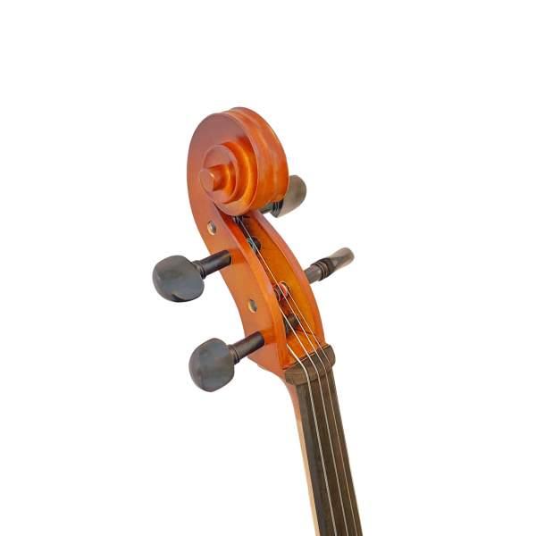 Produktbillede af cellosnegl med hvid baggrund
