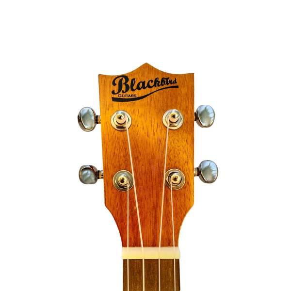 Produktbillede af hovedet på en koncert-ukulele med hvid baggrund