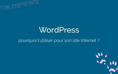 Pourquoi je vous conseille de créer votre site Internet professionnel sur WordPress ?