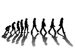 17102012: Abbey Road Evolution