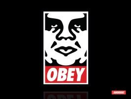 20130527_Obey