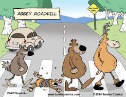 Abbey-Road (1)