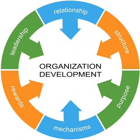 Organizational Development Fundamentals Training