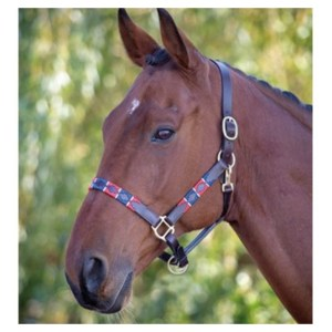 Blenheim Leather Polo Headcollar
