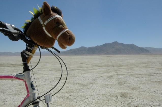 Sparkle Pony - 2011