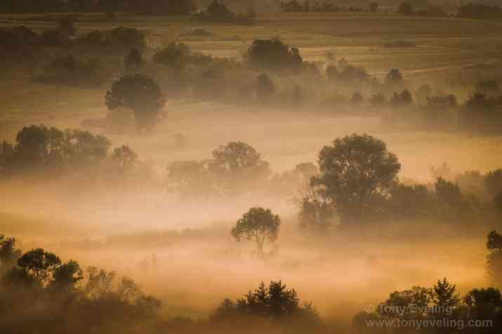 You only have minutes to photograph morning mist like this. Be patient and get there early.