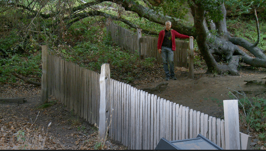 Tony Farley standing where the fence moved 16 feet in the 1906 San Francisco Earthquake.