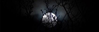 Blood Moon '14-44