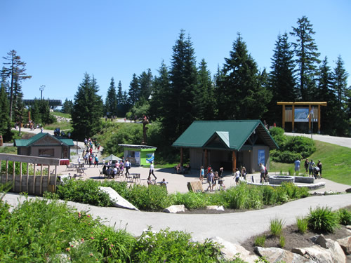 Grouse Mountain mountain-top area