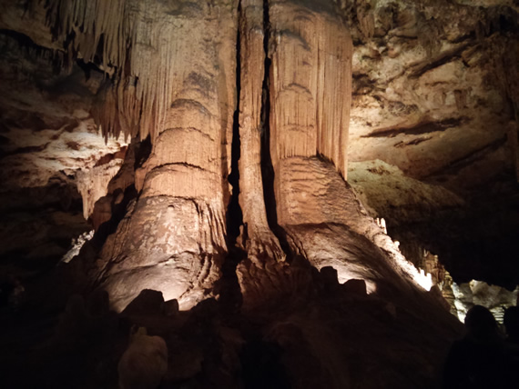 Luray Caverns redwood