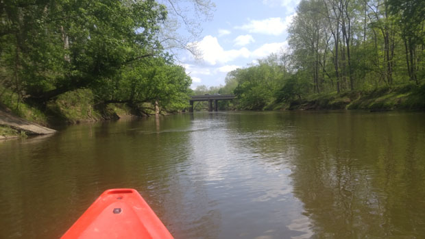 Neuse River Kayaking