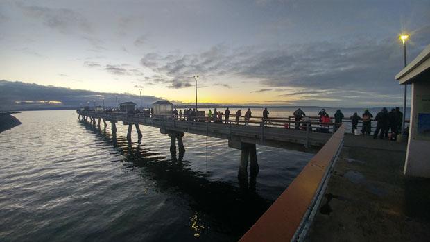 squidding pier