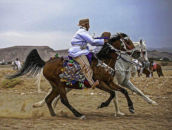 Horse Event Oman