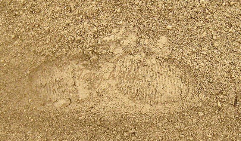 Leopard Print over my shoe print