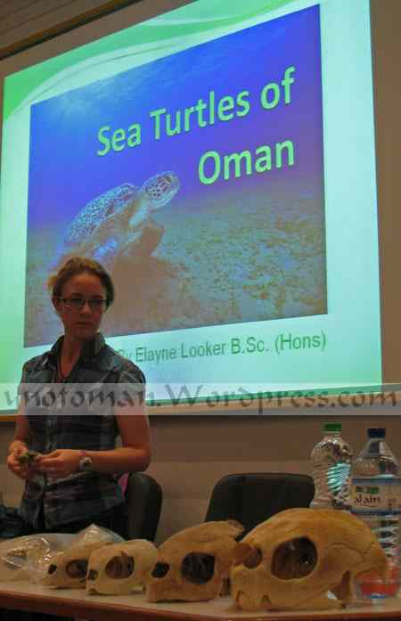 Masirah Island's Turtles in Oman with Elayne Looker