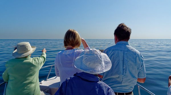 Dolphin Watching Muscat Oman Tour for Christmas