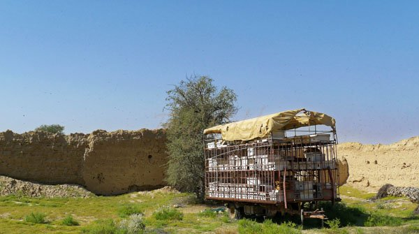 Mobile transport for Bee Hives