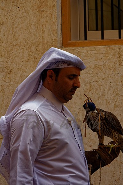 Doha Suq Waqif Qatar Man Falcon