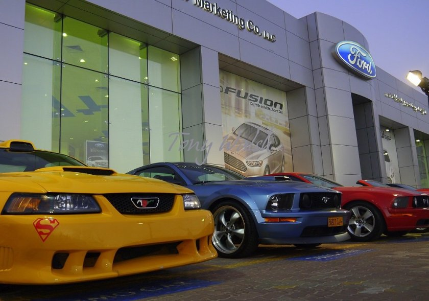 Ford Mustangs on Display