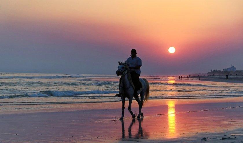 Horse & Rider on an Omani Beach