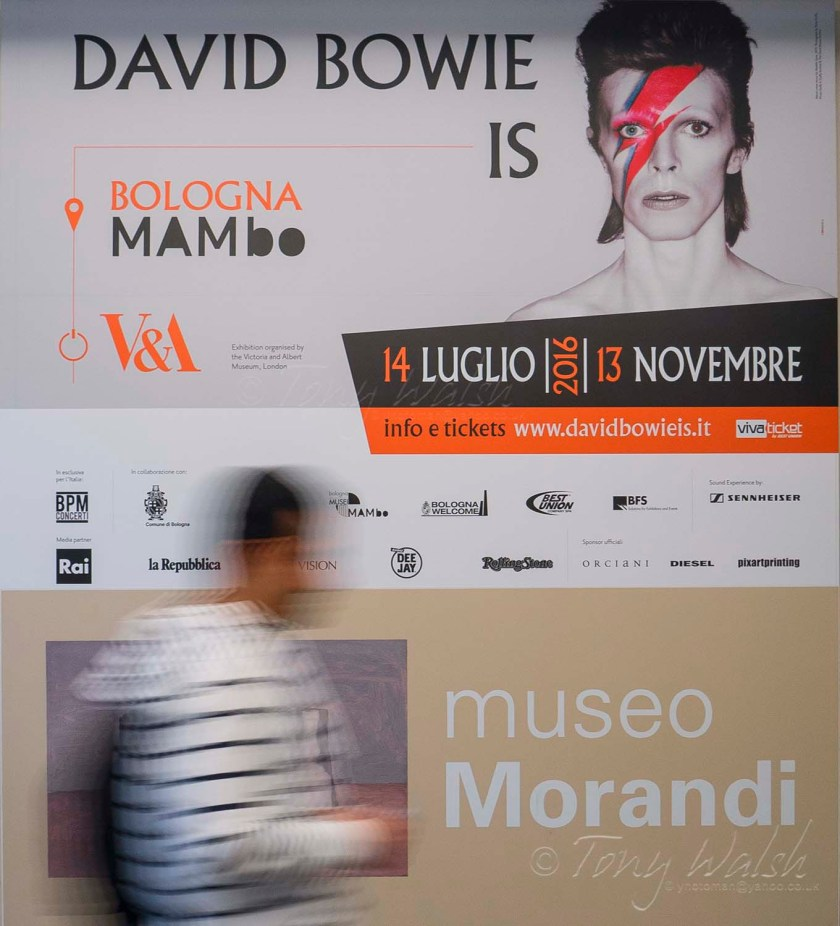 David Bowie is ...Bologna