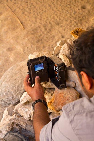 Hadi Al Hikmani reviewing an image of a Hyaena