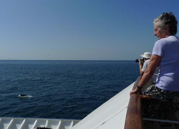 Island Sky at Sea Arabian Gulf Cruise
