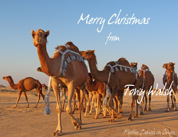 Merry Christmas from Oman