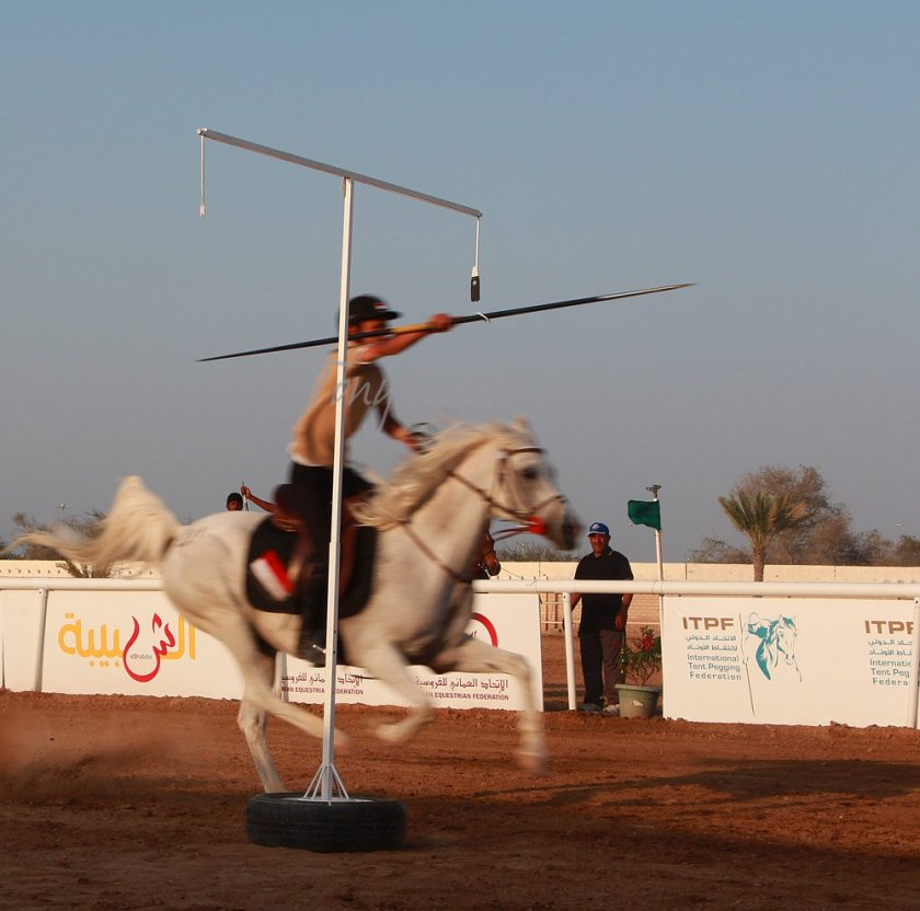 Tent Pegging Ring