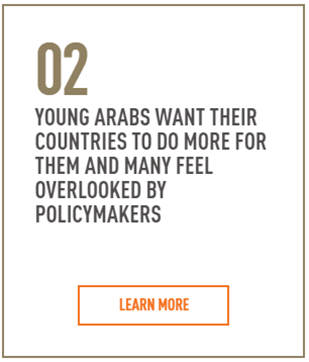 Arab Youth Survey