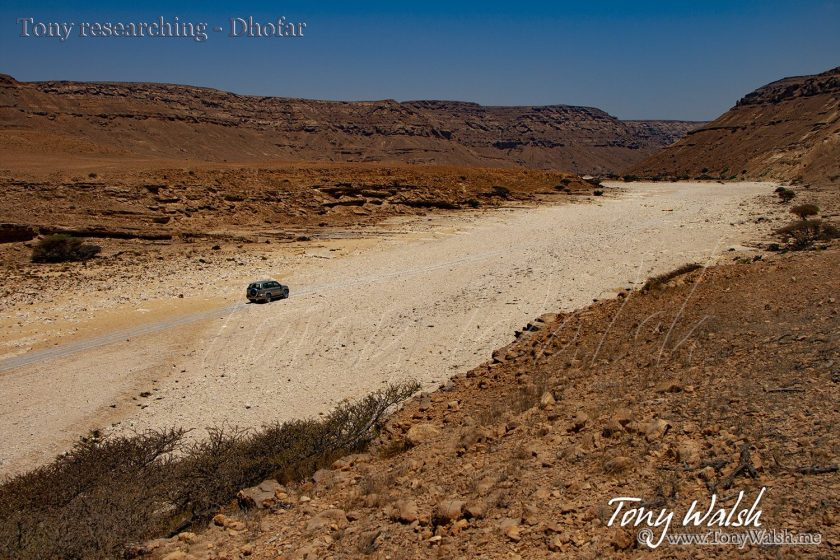 Tony Walsh researching - Dhofar