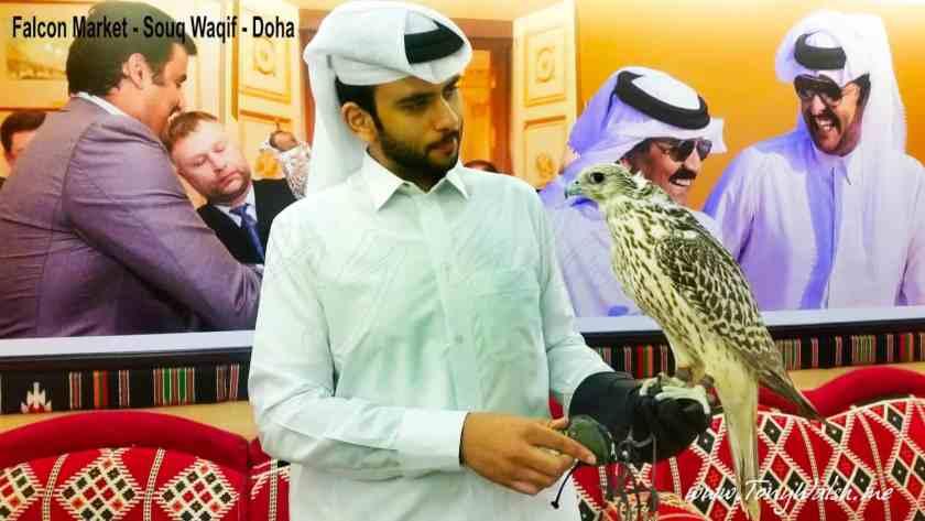 Falcon Market - Souq Waqif - Doha